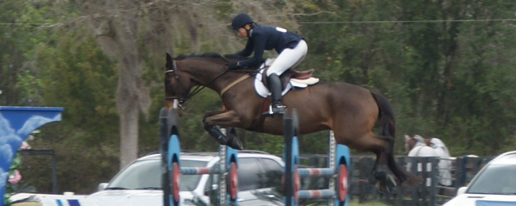 Equestrian Events Horse Farms Forever Hits